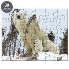 Mama polar bear Puzzle