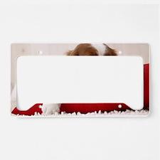 Spaniel greeting License Plate Holder