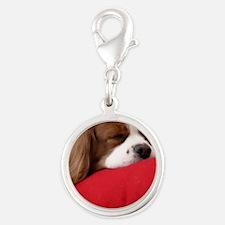 Spaniel round ornament Silver Round Charm