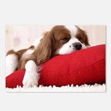 Spaniel mousepad Postcards (Package of 8)