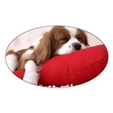 Spaniel note Decal