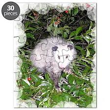 2-PoCh4.25x5.5 Puzzle