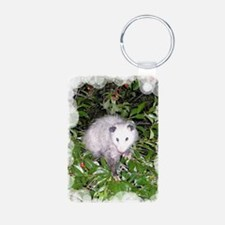 2-PoCh4.25x5.5 Aluminum Photo Keychain