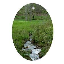 green_creek_lgp Oval Ornament
