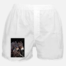 twosome_lg_poster Boxer Shorts