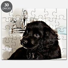 005 Puzzle