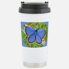 Eastern Tailed Blue Butterfly,  Travel Mug