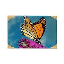 Monarch Butterfly, Calendar, Year Rectangle Magnet