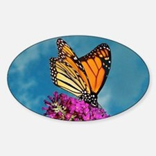Monarch Butterfly, Calendar, Year A Decal