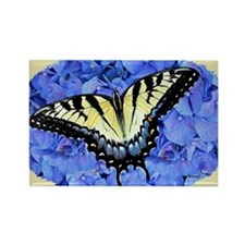 Eastern Yellow Tiger Swallowtail  Rectangle Magnet