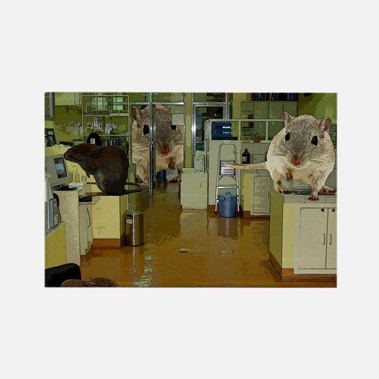 Lab Rats3 copy Rectangle Magnet