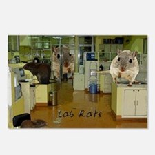 Lab Rats3 copy Postcards (Package of 8)