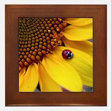 Ladybug on Sunflower Petal Framed Tile