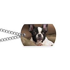 F pup rec magnet Dog Tags