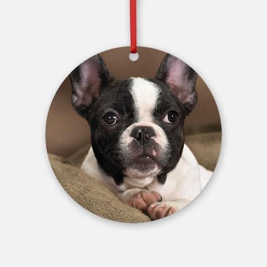 F pup panel print Round Ornament