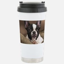 F pup panel print Stainless Steel Travel Mug