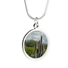 desert_scene_panel Silver Round Necklace