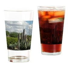 desert_scene_panel Drinking Glass
