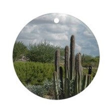 desert_scene_panel Round Ornament