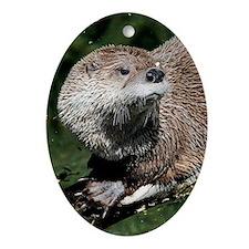 otter1_Lg_framed Oval Ornament