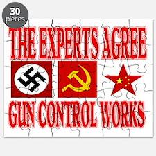 GUN CONTROL WORKS Puzzle