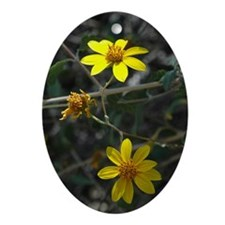 yellow_card Oval Ornament