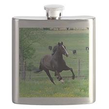 spring_walker_panel Flask