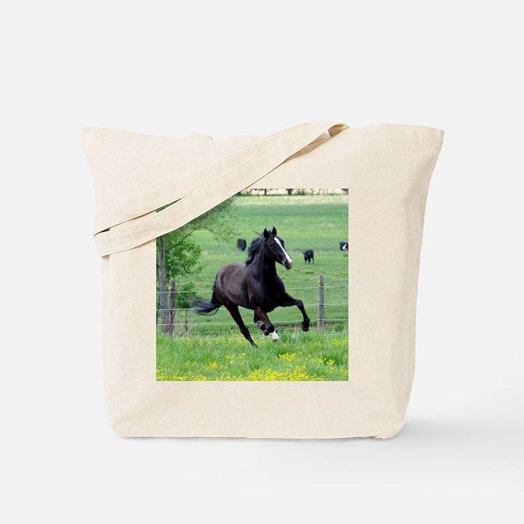 spring_walker_panel Tote Bag