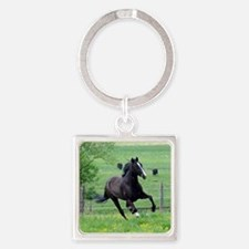 spring_walker_panel Square Keychain
