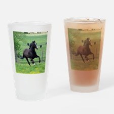 spring_walker_panel Drinking Glass