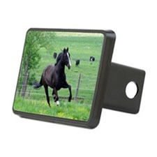 spring_walker_mpad Hitch Cover