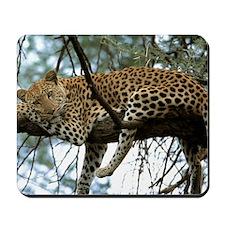 Leo Tree panel print Mousepad