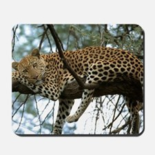 Leo Tree panel print Mousepad