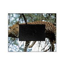Leo Tree panel print Picture Frame