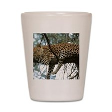 Leo Tree panel print Shot Glass