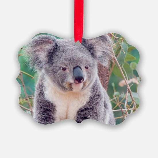 Koala Smile L print Ornament