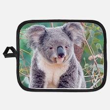 Koala Smile L print Potholder