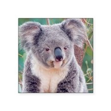 "Koala Smile note Square Sticker 3"" x 3"""