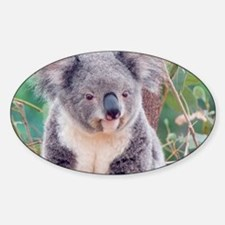 Koala Smile L print Decal