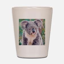 Koala Smile pillow Shot Glass