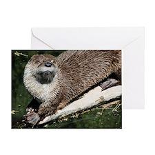 otter2_mini Greeting Card
