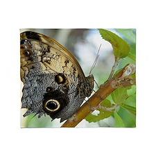 owl_butterfly_Lg_framed Throw Blanket