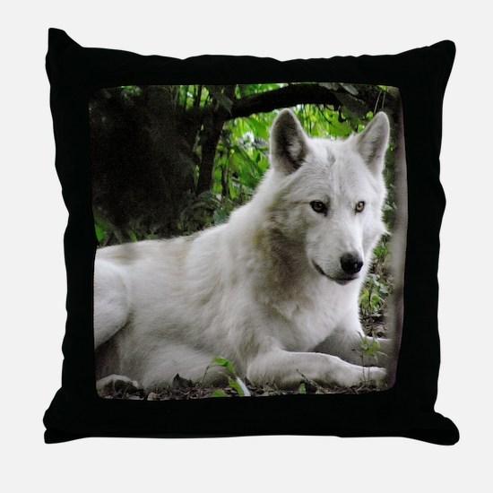 P9200260 Throw Pillow