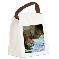 PA290759 Canvas Lunch Bag