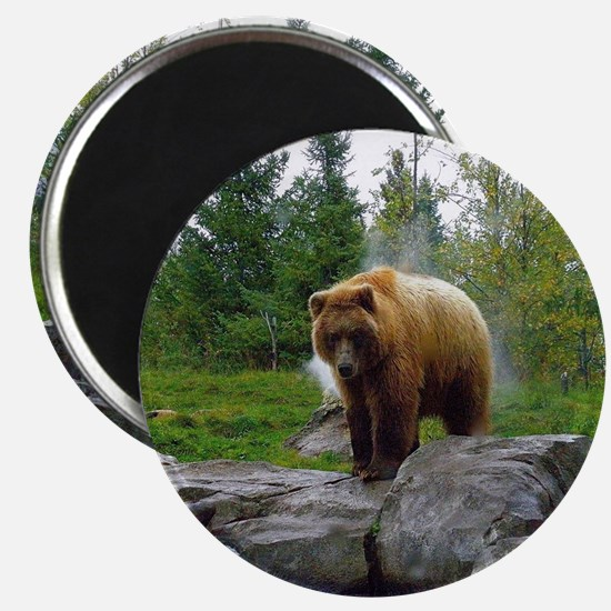 Grizzly Magnet