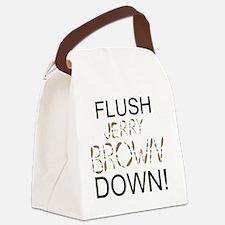 FlushBrownDown01 Canvas Lunch Bag