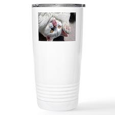 silly_cat_calendar Travel Coffee Mug