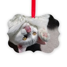 silly_cat_Lg_framed Ornament