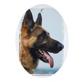 German shepard Oval Ornaments
