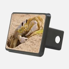 Fiddler Crab Hitch Cover